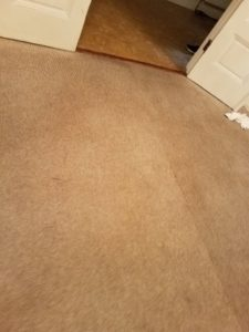 Carpeting Cleaned Annapolis MD