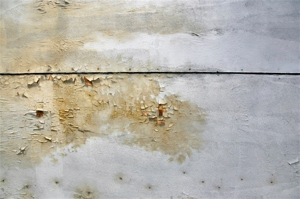 Common Mold Causes